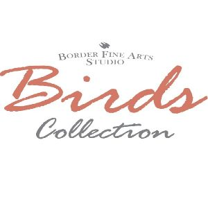 BFA Birds and Wildlife